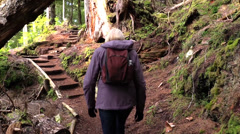 Woman hiker, Tongass National Forest Stock Footage