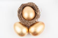 Stock Photo of golden eggs and bird nest