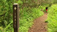 Stock Video Footage of Individual Hiking Past Trail Sign