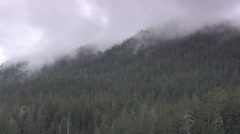 montain fog and forest - stock footage