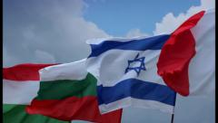 Israeli, French, Bulgarian, Hungarian flags. Peaceful meeting, click for HD Stock Footage