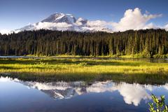 saturated color at reflection lake mt. rainier national park - stock photo