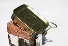 Corned beef in a can - stock photo