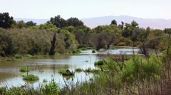 San Joaquin River Stock Footage