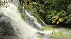 Stock Video Footage of Rainforest stream in the Choco Biological Region, western Ecuador