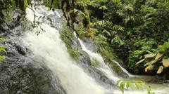 Rainforest stream in the Choco Biological Region, western Ecuador  Stock Footage