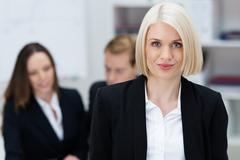 attractive female business executive - stock photo