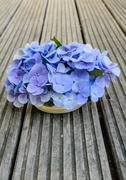 Bouquet of hydrangea on rustic wood Stock Photos