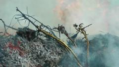 Ground Fire Stock Footage
