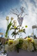 Stock Photo of beautifully decorated wedding venue