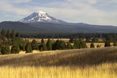 golden grassland countryside mount adams mountain farmland landscape - stock photo