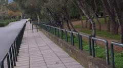 long park - stock photo