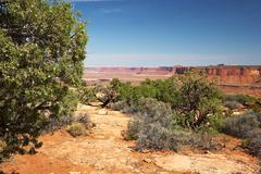 red desert, canyonlands national park, utah, usa - stock photo