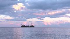 Stock Video Footage of The sailfish sails on the sea