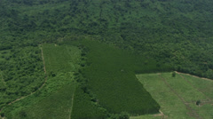 Aerial Environment Forest Encroachment Human Conflict Nature Stock Footage
