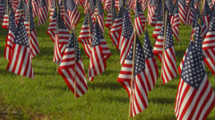Large display of small American flags.  Early morning. Stock Footage