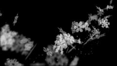 Snow and Snowflakes Swish Across the Screen Stock Footage