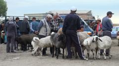 Selling sheep in Kyrgyzstan bazaar - stock footage