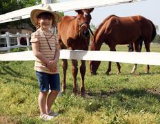 Happy little girl and foals on farm Stock Photos
