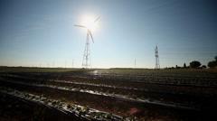 Strawberry field, Wind Engine, Shadow Stock Footage