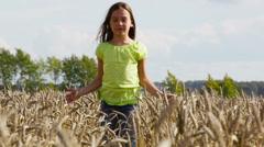 Wheat spikes Stock Footage