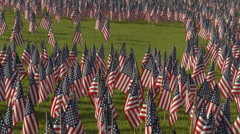 Large display of small American flags.   Wide angle. Stock Footage