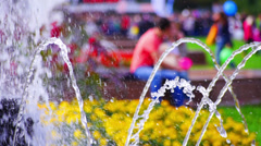 Summer day in a park. Stock Footage