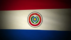 Flag Paraguay 04 Stock Footage