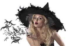portrait of a cute and sexy witch - stock photo