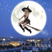 sexy witch riding a broom - stock photo