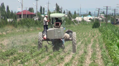 Spraying pesticide in Osh, Kyrgyzstan, agriculture in Central Asia Stock Footage