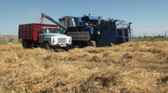 Wheat harvest in former Soviet Union, truck, machinery, combine harvester, rural Stock Footage