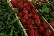 Stock Photo of jalapeno and bell peppers at a market