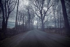Gloomy road durring a cold day of autumn Stock Photos