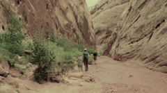 Family walking in a deep desert slot canyon Stock Footage