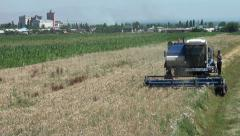 Combine harvest, Kyrgyzstan, Central Asia, village, rural scene, agriculture Stock Footage