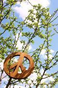 Peace tree Stock Photos