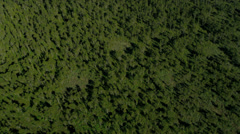 Aerial above view North Delta peat bog, Vancouver Stock Footage