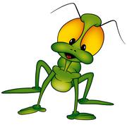 Green Beetle Stock Illustration