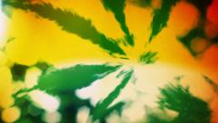 Stock Video Footage of Psychedelic Psycho Cannabis / Marijuana Leaf HD