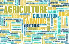 Agriculture industry Stock Illustration