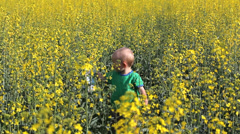 Single baby hold a cap in his hand play in rape fied in bloom with yellow flower Stock Footage