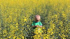 Alone upset baby in rape flourish field, baby in nature between yellow flowers Stock Footage