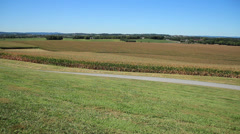 Woman running in front of cornfields during Fall Stock Footage