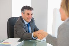 Pleased businessman shaking the hand of a interviewee Stock Photos