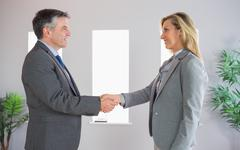 Stock Photo of Pleased businessman shaking the hand of a content businesswoman