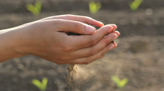 Agriculture scenery, fertile soil pour from lady hands, plants in background Stock Footage
