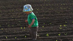 Love scenery, sweet boy walk on spring fertile soil to his young mother arms Stock Footage