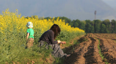 Mother and baby son rest in spring rape field in bloom Stock Footage