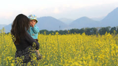 Beautiful scenery, mother and baby child in flourish rape field play together Stock Footage